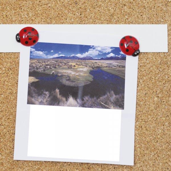 Magnet-Metall-Streifen, 500 x 50 mm